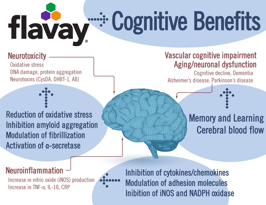 Flavay protects the brain in multiple ways.